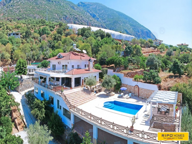 Properties in Alanya/Kestel for sale Ripo code: 1268-253-11-P